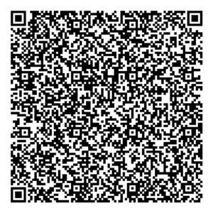 QR визитка ЦЭИ